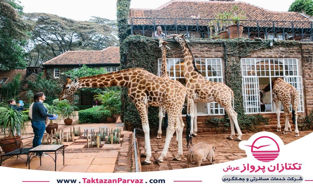 هتل زرافه در نایروبی